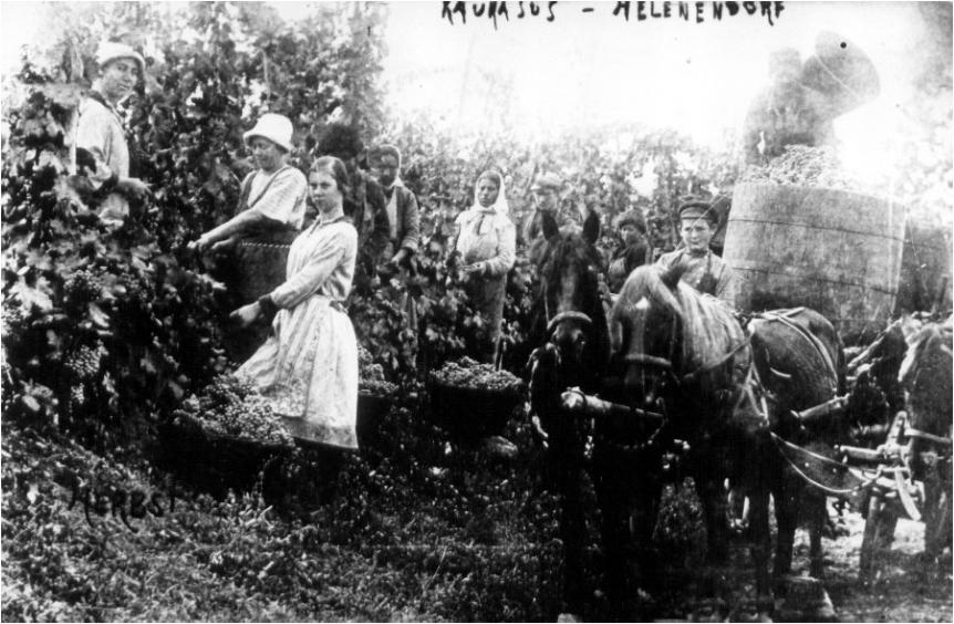 Almanlar-foto-3.png (593 KB)