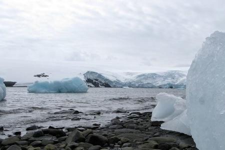 Arktikada buzlar sürətlə əriyir