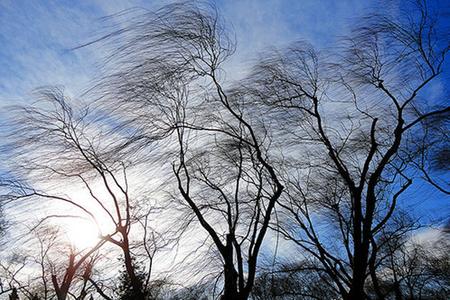 Hava proqnozu: Güclü külək əsəcək, qar yağacaq