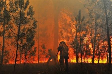 Rusiyada meşə yanğınları - 28-i söndürüldü, 10-u yanır