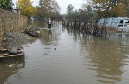 Mingəçevirdə 100-dən çox yaşayış evini su basdı