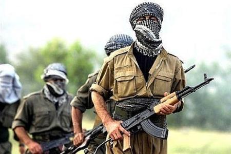 PKK-nın beş terrorçusu təslim oldu