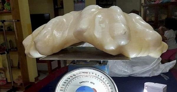 Filippinin Palavan adasında yaşayan bir balıqçının 10 il öncə 34 kiloqram çəkisi olan bir inci tapdığı və onu gizlədiyi ortaya çıxıb.