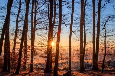 Sabahın hava proqnozu açıqlanıb