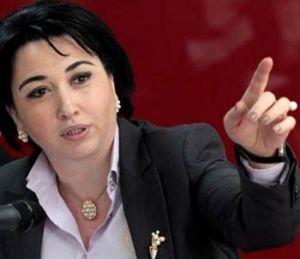 Gürcüstan parlamentinin komitə sədri: