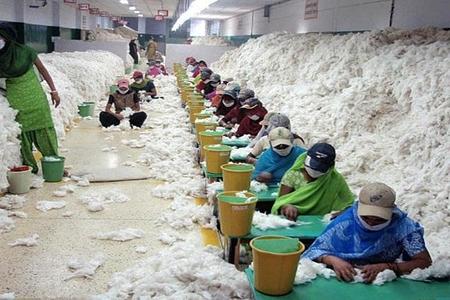 HESABAT: Dünyada 25 milyon insan kölə kimi yaşayır