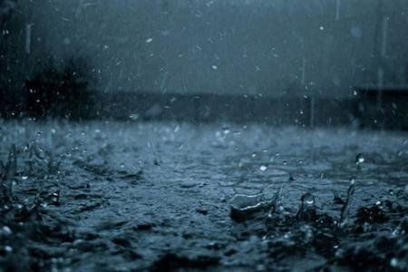 Leysan yağış Tovuzda taxıl sahələrinə ciddi ziyan vurub