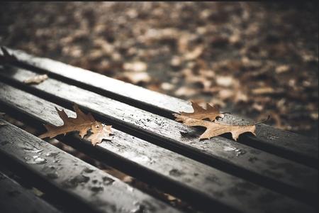 Sabah intensiv yağış yağacaq- Xəbərdarlıq
