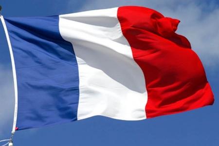 Konqoda oğurlanmış Fransa vətəndaşı azad edilib