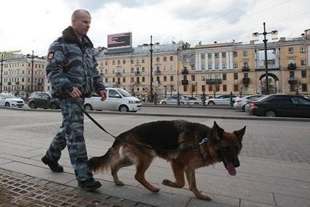 Peterburqda soyğunçuluq edən azərbaycanlılar saxlanıldılar