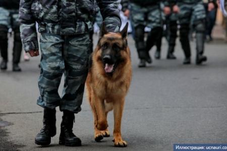 Rusiyada polis serjantı Azərbaycan vətəndaşını ölümdən xilas edib