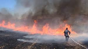 Ağstafada taxıl sahəsi yanmağa başlayıb