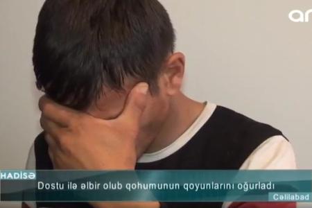 26 baş qoyun oğurlayan dayıoğlunun GÖRÜNTÜLƏRİ – VİDEO