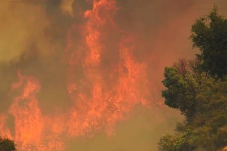 Kaliforniyada meşə yanğınları daha da çox əraziyə yayılıb