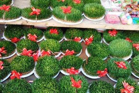 Novruz Yarmarkası : Qiymətlər və Fotolar