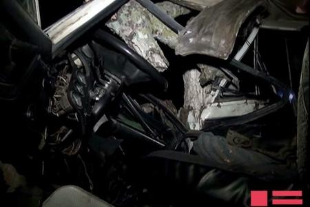 Avtomobil ağaca çırpılıb, sürücü yaralı qadının çantasını götürərək qaçıb