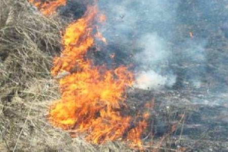 Cəlilabadda 150 hektar biçilmiş taxıl sahəsi yanıb