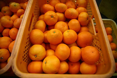 Rusiya Türkiyədən 130 tona yaxın meyvəni buraxmadı