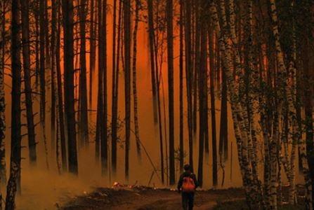 Kaliforniyada meşə yanğınları - 10 ölü, 100 yaralı