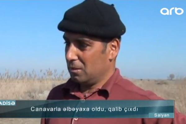 Canavarı boğaraq öldürən azərbaycanlı danışdı: