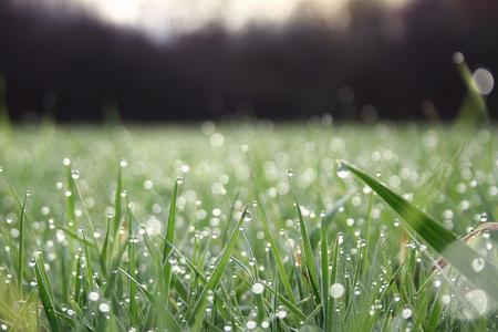 Martın ilk gününə olan hava proqnozu açıqlanıb