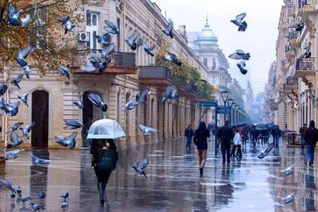 Külək, yağış, qar - HAVA PROQNOZU