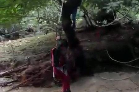 Leysan yağışlar İsmayıllıda təbii fəlakətə yol açıb, 60 kənd işıqsız, 7 kənd qazsız qalıb
