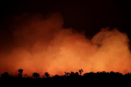 Braziliya meşə yanğınlarını söndürməyə hərbçiləri göndərir