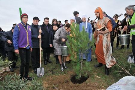 """Rasim Balayev """"Nəsimi""""nin ağac əkməsindən danışdı: """"Bunun nəyi pisdir?"""""""