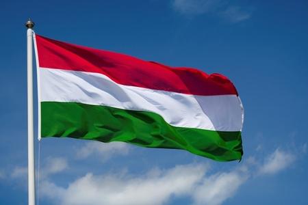 Macarıstan Türk Şurasına üzv olacaq