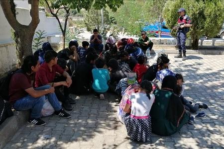Türkiyədə 43 qanunsuz miqrant saxlanılıb