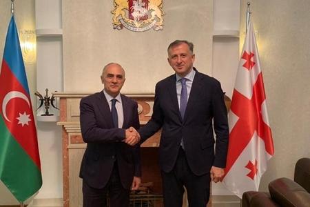 Gürcüstanın Azərbaycandakı səfiri GUAM-ın baş katibi ilə görüşüb